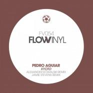 FV054 - Pedro Aguiar Ep